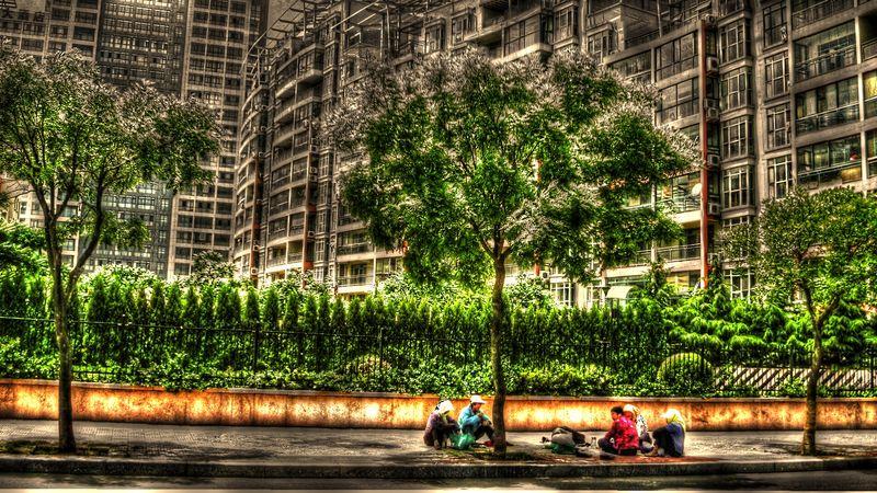 Γυναίκες κάτω από δένδρο