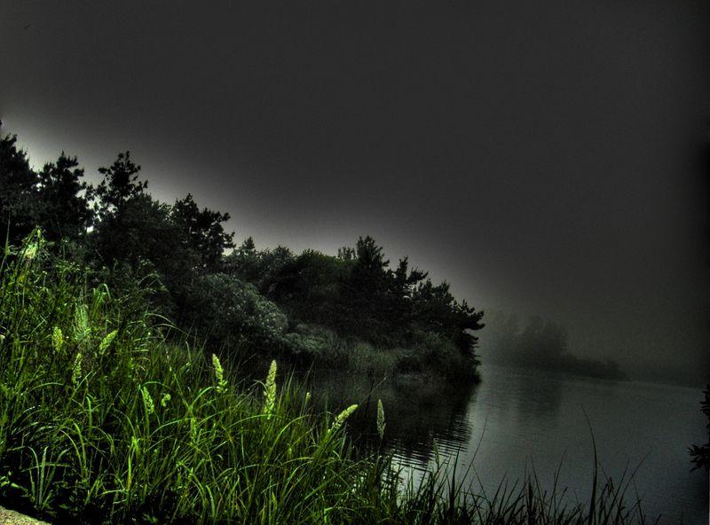 Lake fog 16