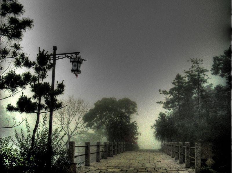 Lake fog 2