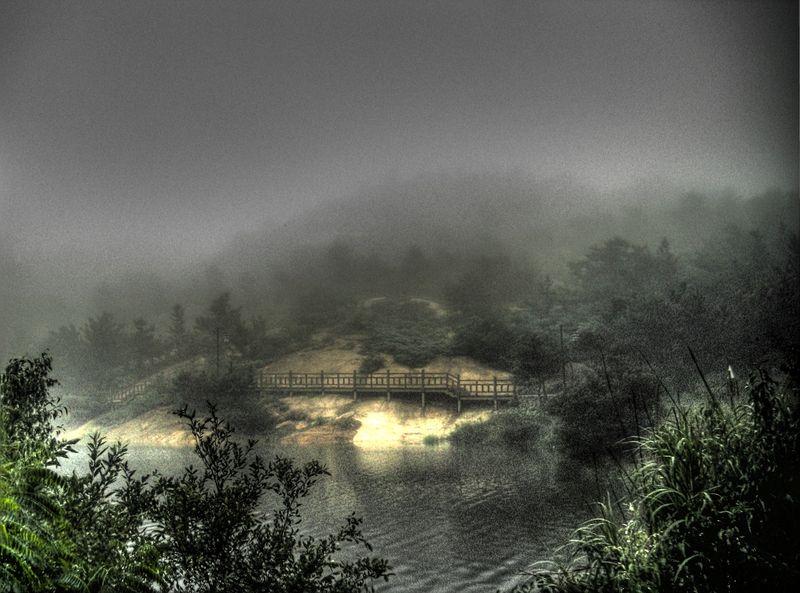 Lake fog 20