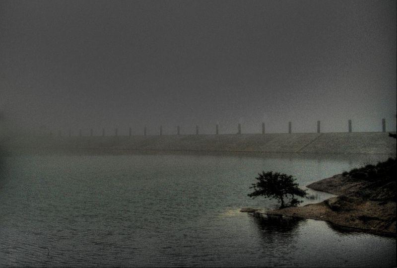 Lake fog 21