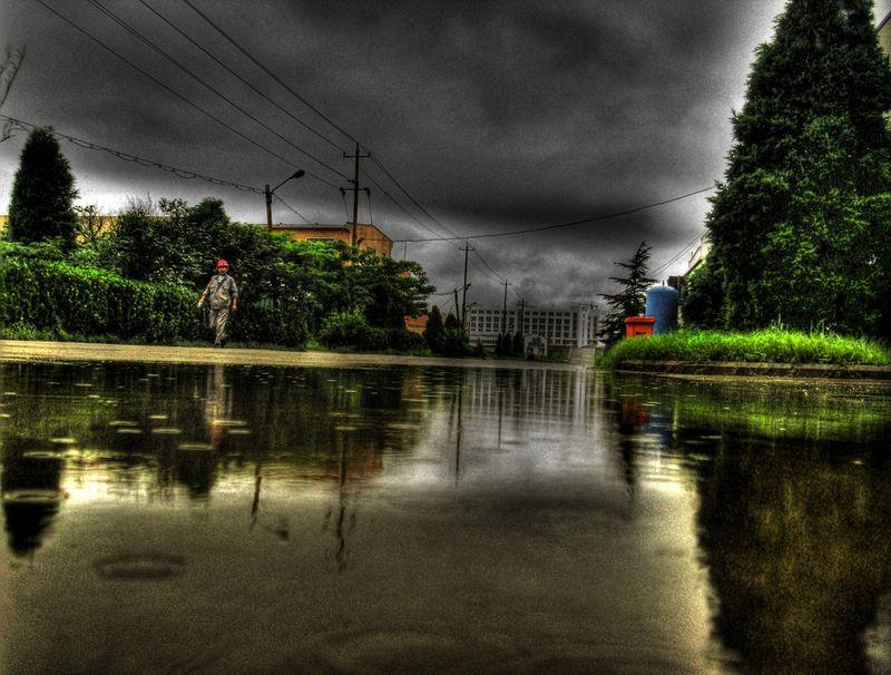 Rain in the yard 6