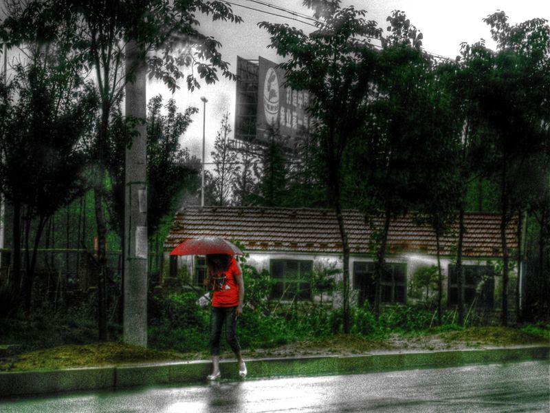 Rain 14