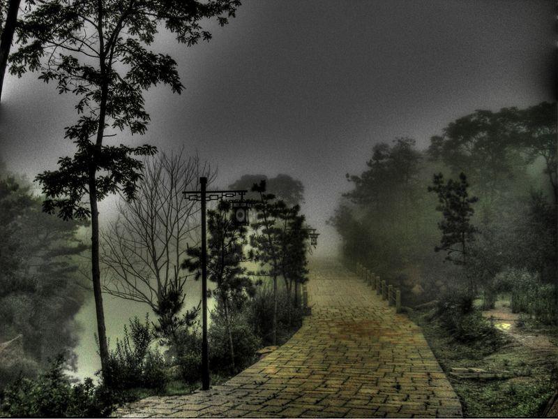 Lake fog 1