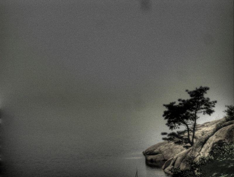 Lake fog 9